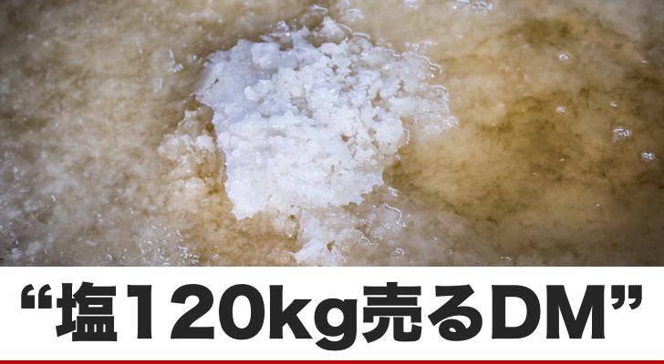 【塩120kg】を売り込むダイレクトメールから得た学び